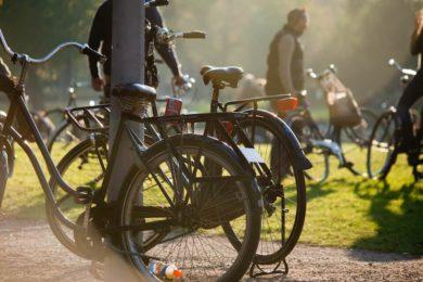 Куда сходить в Амстердаме самостоятельно - парк Вондела (Вонделпарк)