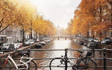 Стоит ли ехать в Амстердам осенью?