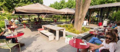 Лучшие места для завтрака в Амстердаме кафе Dignita