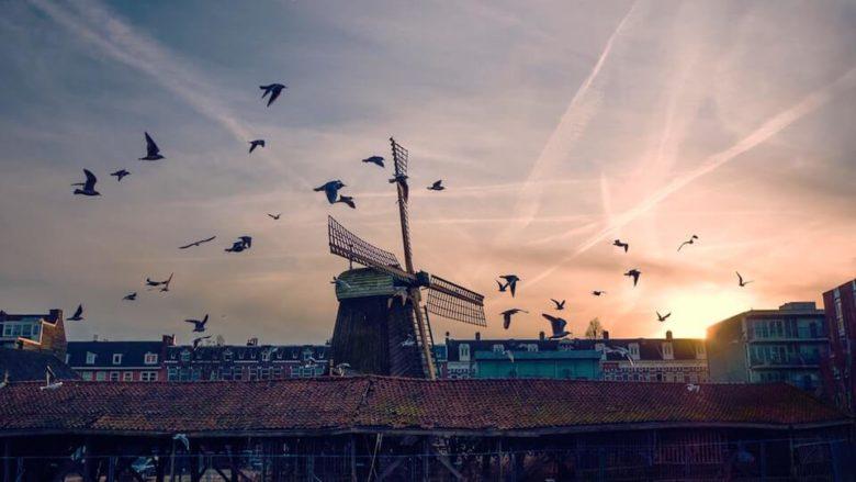 Советы туристу про Амстердам